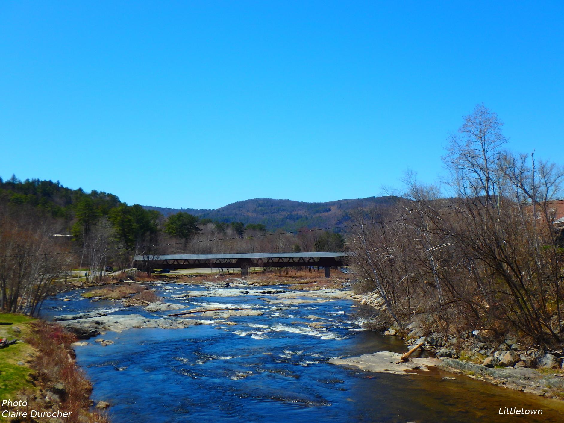 une rivière au printemps