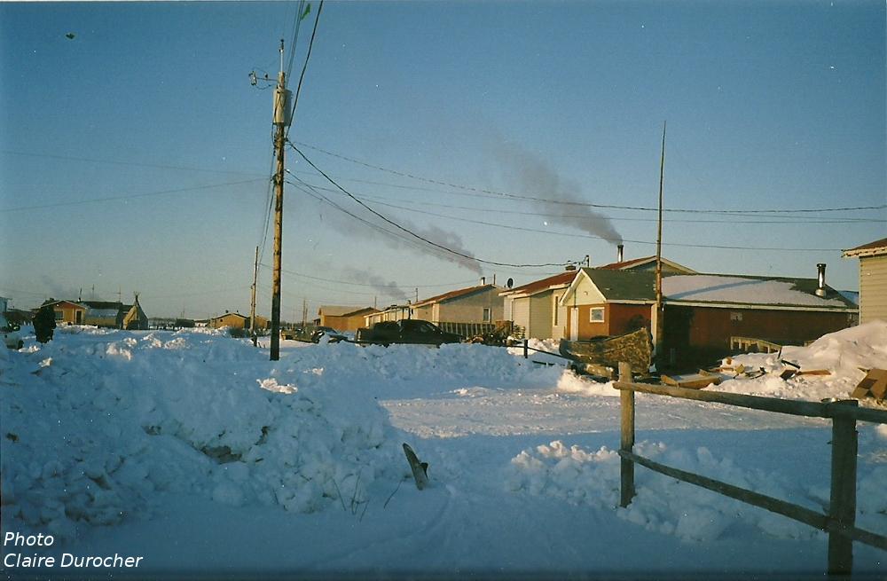 maisons d'une communauté nordique