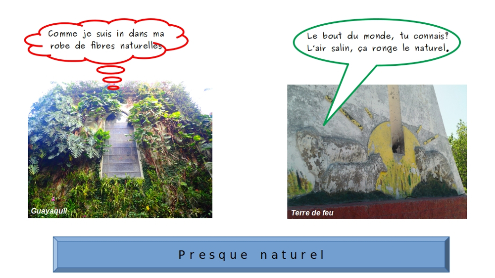 mur végétal et un mur rongé par l'air salin