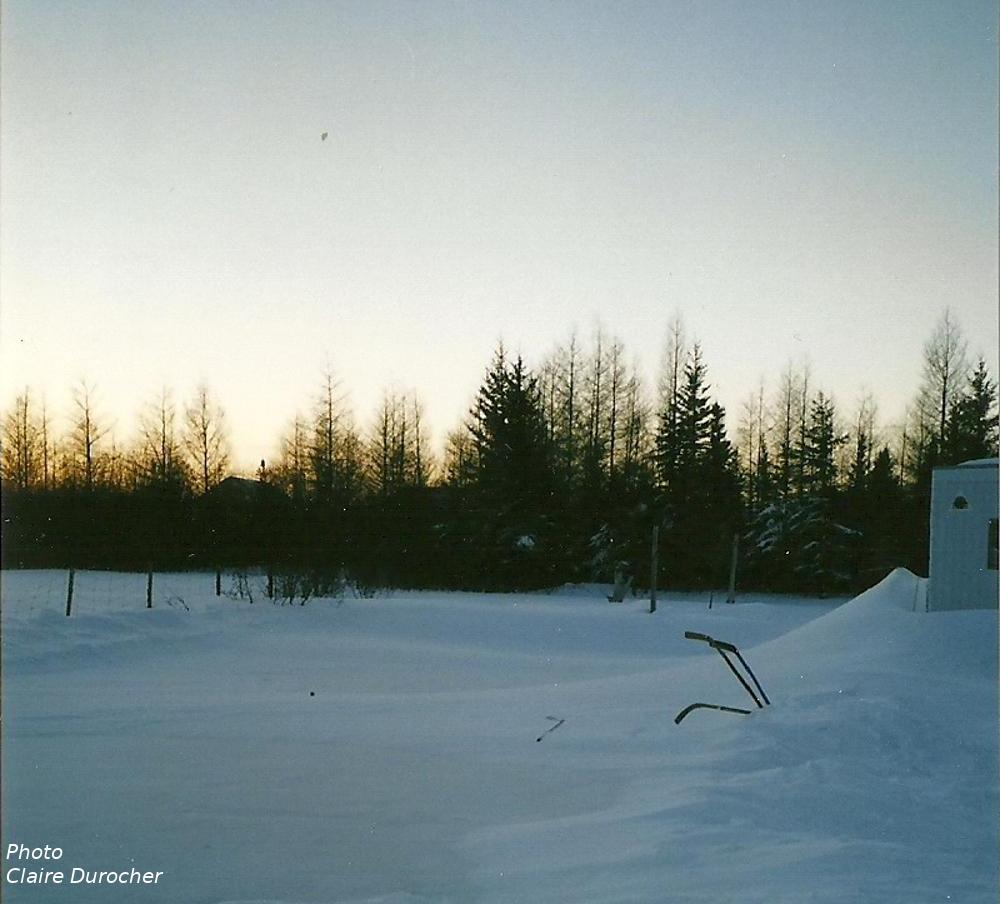 bâtons de hockey laissés sur un banc de neige