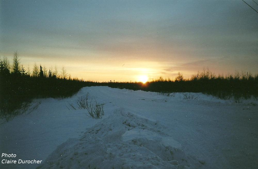 coucher de soleil sur la route de glace dans la forêt