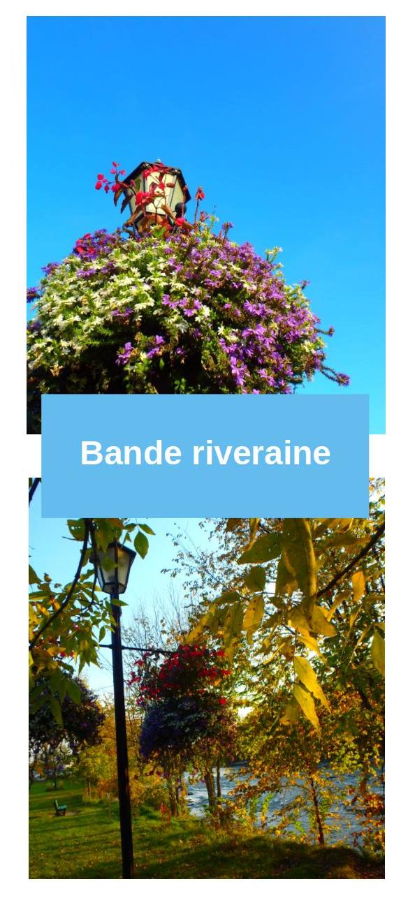 Photos bande riveraine fleurie