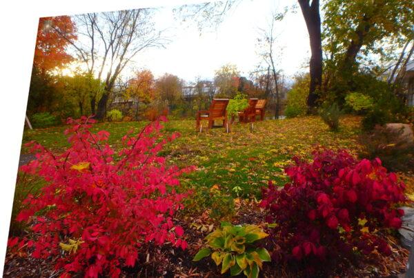aménagement d'automne